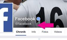 Facebook Seiten Kategorie 2