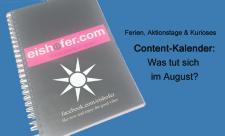 Content Plan August eishofer