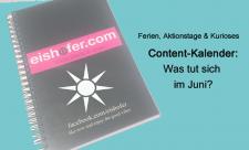 Content Plan Juni eishofer